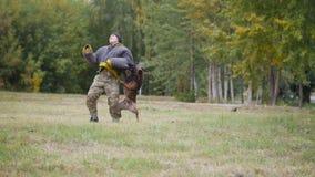 训练的德国牧羊犬狗咬伤他的在保护衣服的教练员在胳膊 免版税库存照片