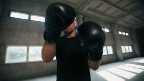 训练的拳击手 股票录像