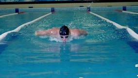 训练的运动员在水池游泳 股票录像