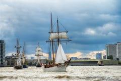 训练国际集合点高船赛船会的风帆 库存图片