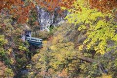 训练从在桥梁上的一个隧道出来在Naruko峡谷w 库存图片