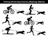 训练行使与狗:canicross, bikejoring, skijoring的剪影 库存图片