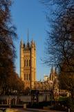 议会在冬天早晨,伦敦议院  免版税库存图片