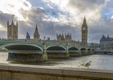 议会,伦敦大本钟和议院在日落的 免版税图库摄影