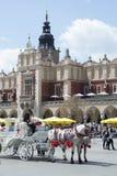 议院在克拉科夫,国家波兰 图库摄影