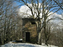 议院在森林里在冬天 免版税库存照片