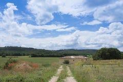 议院在蓝天下与夏天在前景开花在艾克斯普罗旺斯附近 免版税图库摄影