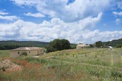 议院在蓝天下与夏天在前景开花在艾克斯普罗旺斯附近 图库摄影