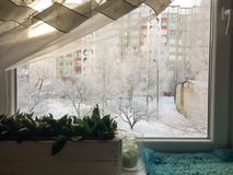 议院窗口视图冬天霜 库存照片