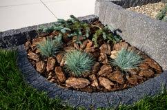 议院角落设计想法:石构筑作为花圃、常青树和淡紫色植物,大阳台 库存图片