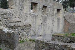 议院,赫库兰尼姆考古学站点,褶皱藻属,意大利 免版税库存照片