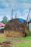 议院,领域的干草堆,在一个喀尔巴阡山脉的村庄,乌克兰 图库摄影