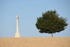 记住从世界大战的死者 免版税库存照片