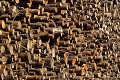 记录木头 免版税库存图片