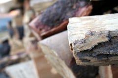 记录木 免版税库存照片