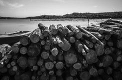 记录木头 图库摄影