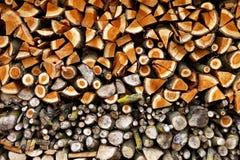 记录木 免版税库存图片