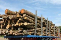 记录的日志杉木木材拖车 免版税库存图片