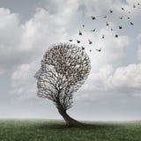 记忆损失概念 免版税库存图片