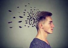 记忆损失由于老年痴呆或脑损伤 头的人丢失的零件作为减少的头脑作用的标志的 库存照片