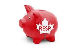 登记的教育储款计划在加拿大 免版税库存照片
