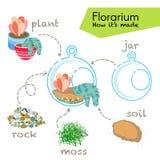 讲解如何做florarium 在玻璃玻璃容器里面的多汁植物, florarium的元素:瓶子,植物,岩石,青苔,土壤 图库摄影