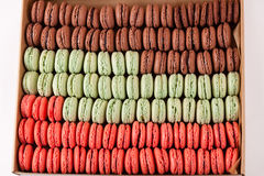 许多上色在箱子的蛋白杏仁饼干 免版税图库摄影