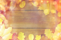 许多不同的下落的秋叶框架  免版税库存照片