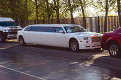 许多不同的大型高级轿车汽车为婚礼、庆祝、周年和假日 免版税库存图片