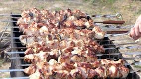 许多串用半熟的肉在河岸的一位金属火盆被安置 股票视频