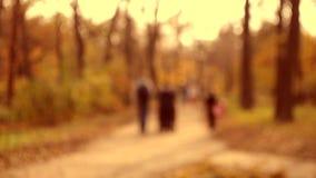 许多人民步行在公园 股票录像