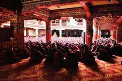 许多修士学习大藏经 库存图片