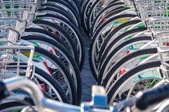 许多公开自行车在租的中国 库存图片
