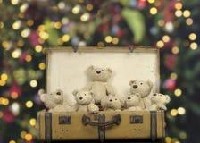 许多在一个老葡萄酒手提箱的玩具熊 免版税库存照片