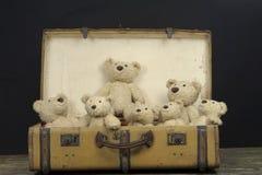 许多在一个老葡萄酒手提箱的玩具熊 免版税图库摄影
