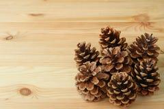 许多在浅褐色的木表上的自然干燥杉木锥体与设计的自由空间 图库摄影