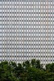 许多在钢和混凝土建筑的Windows 免版税库存图片