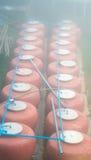 许多在雾天气的大水瓶子 免版税图库摄影