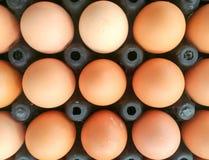 许多在黑蛋盘区的鸡蛋 免版税库存照片