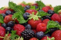 许多夏天成熟莓果关闭,stroberry 库存照片