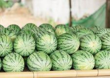 许多大甜绿色西瓜和一个切了西瓜 库存图片
