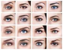 许多女性眼睛拼贴画与另外颜色的 免版税库存图片