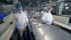 许多工厂劳工从一台移动的传动机包装产品,采取他们 股票录像