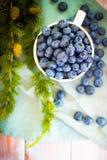 许多新鲜的加拿大蓝莓在一个大白色杯子和驱散其他部分在它附近 库存照片