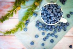 许多新鲜的加拿大蓝莓在一个大白色杯子和驱散其他部分在它附近 图库摄影