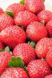 许多新鲜的草莓结果实垂直 免版税库存照片
