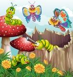 许多昆虫在庭院里 向量例证