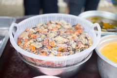 许多未加工的淡菜为厨师做准备是淡菜薄煎饼 图库摄影