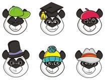 许多杯子熊猫帽子 库存图片
