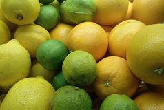 许多柠檬和绿色和黄色文件 库存照片
